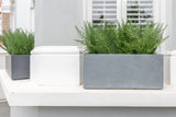 Fantastic Ferns - artificial window box