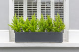 Perfect Pines - artificial window box