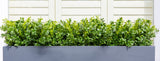 Artificial buxus hedge