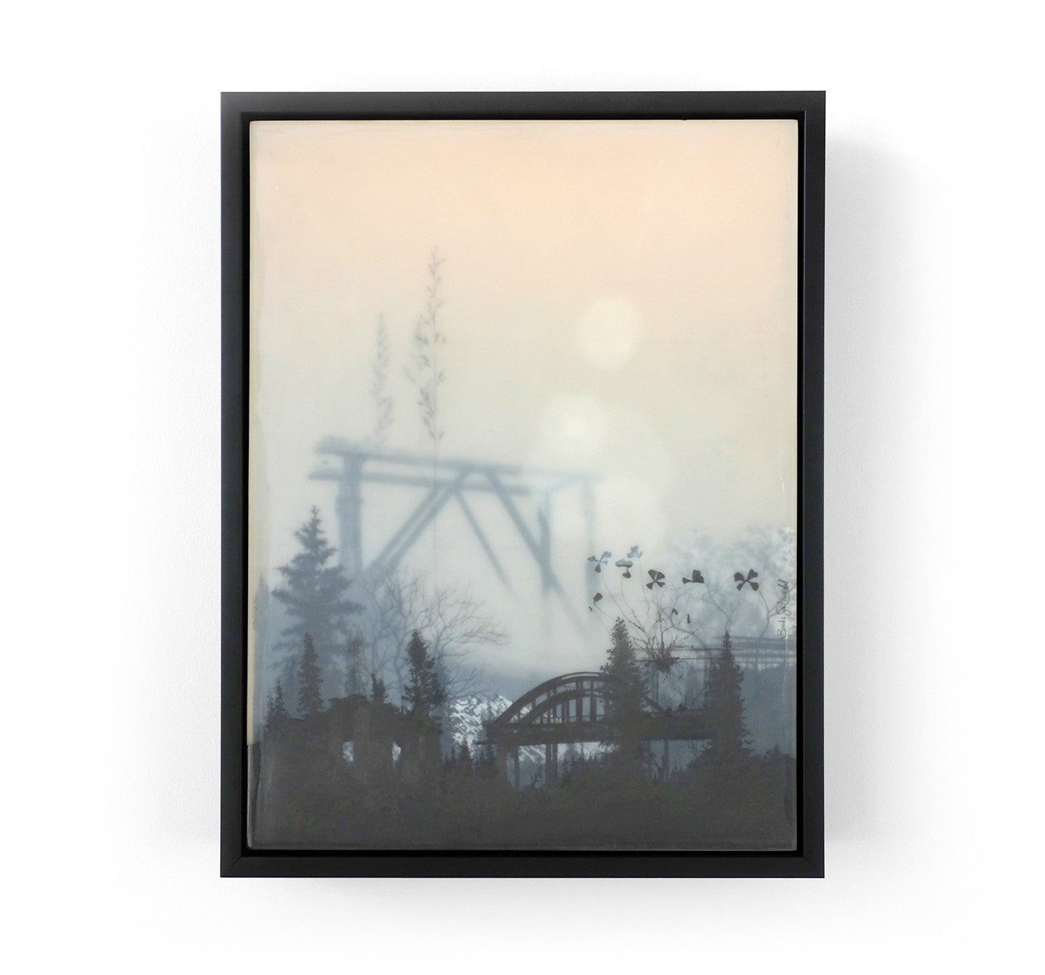 Brooks Salzwedel - Bridges and Weeds