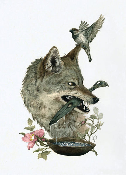Lily Seika Jones - The Wolf and the Sparrow