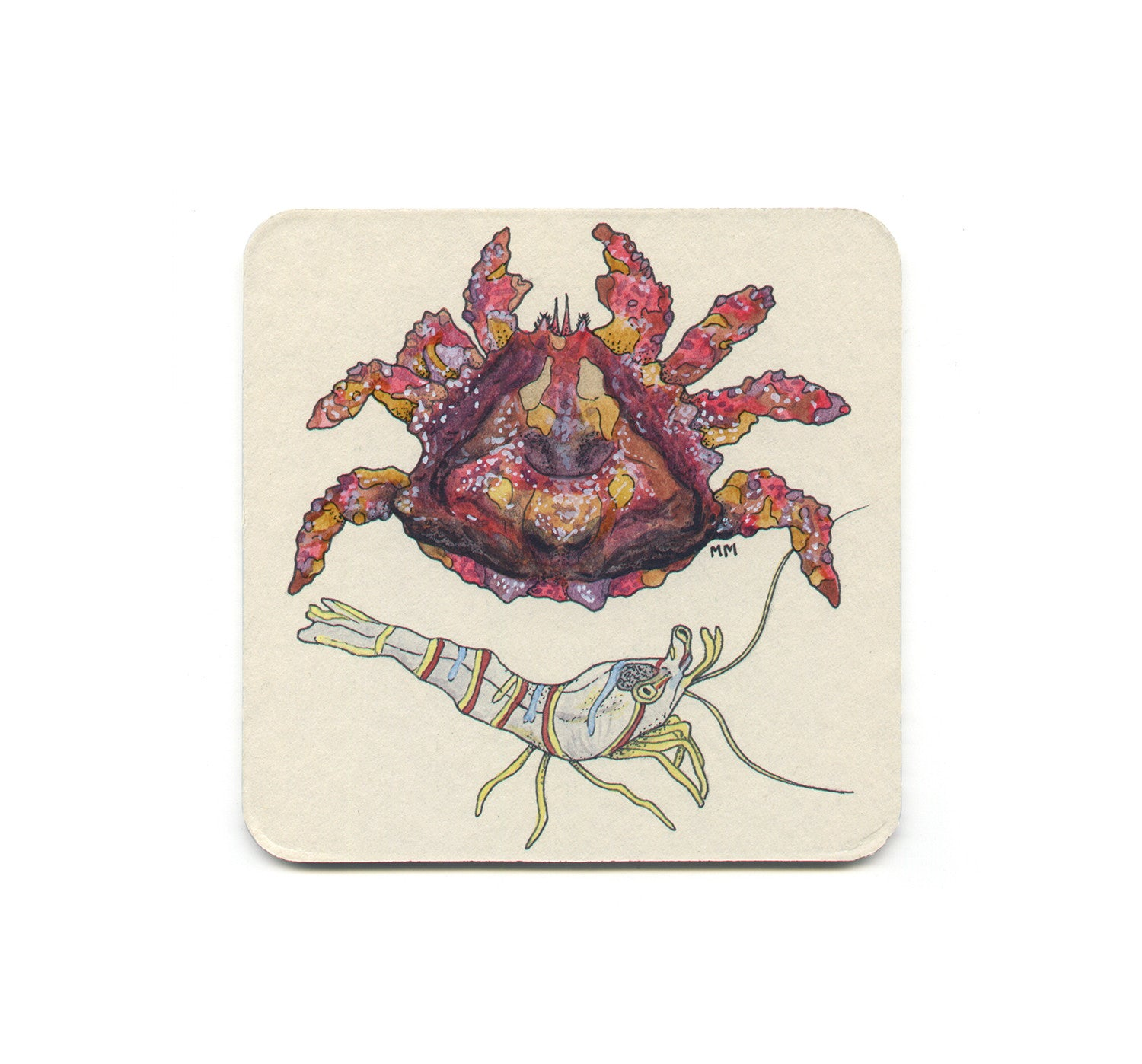 S1 Madison Erin Mayfield - Puget Sound King Crab & Candy Stripe Shrimp Coaster