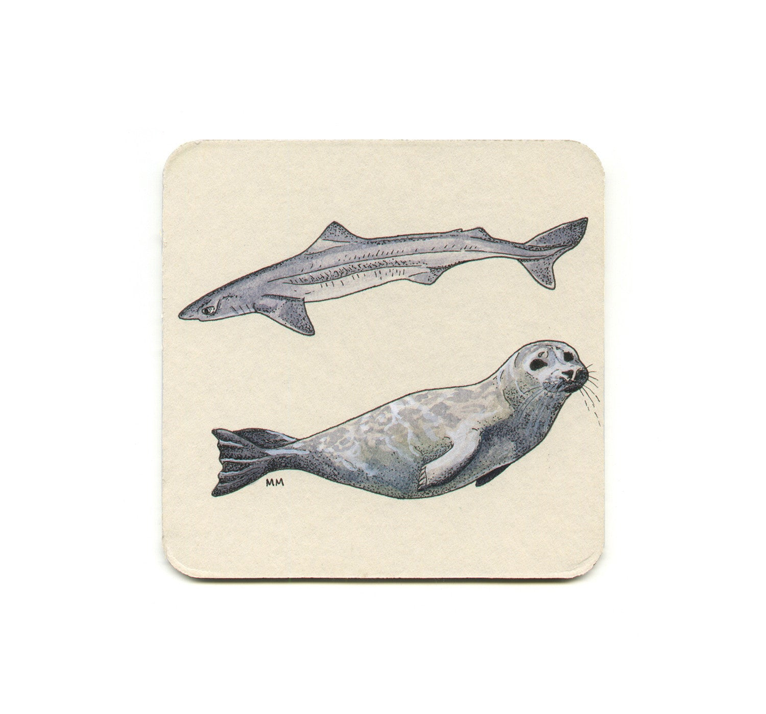 Madison Erin Mayfield - Spiny Dogfish & Pacific Harbor Seal Coaster