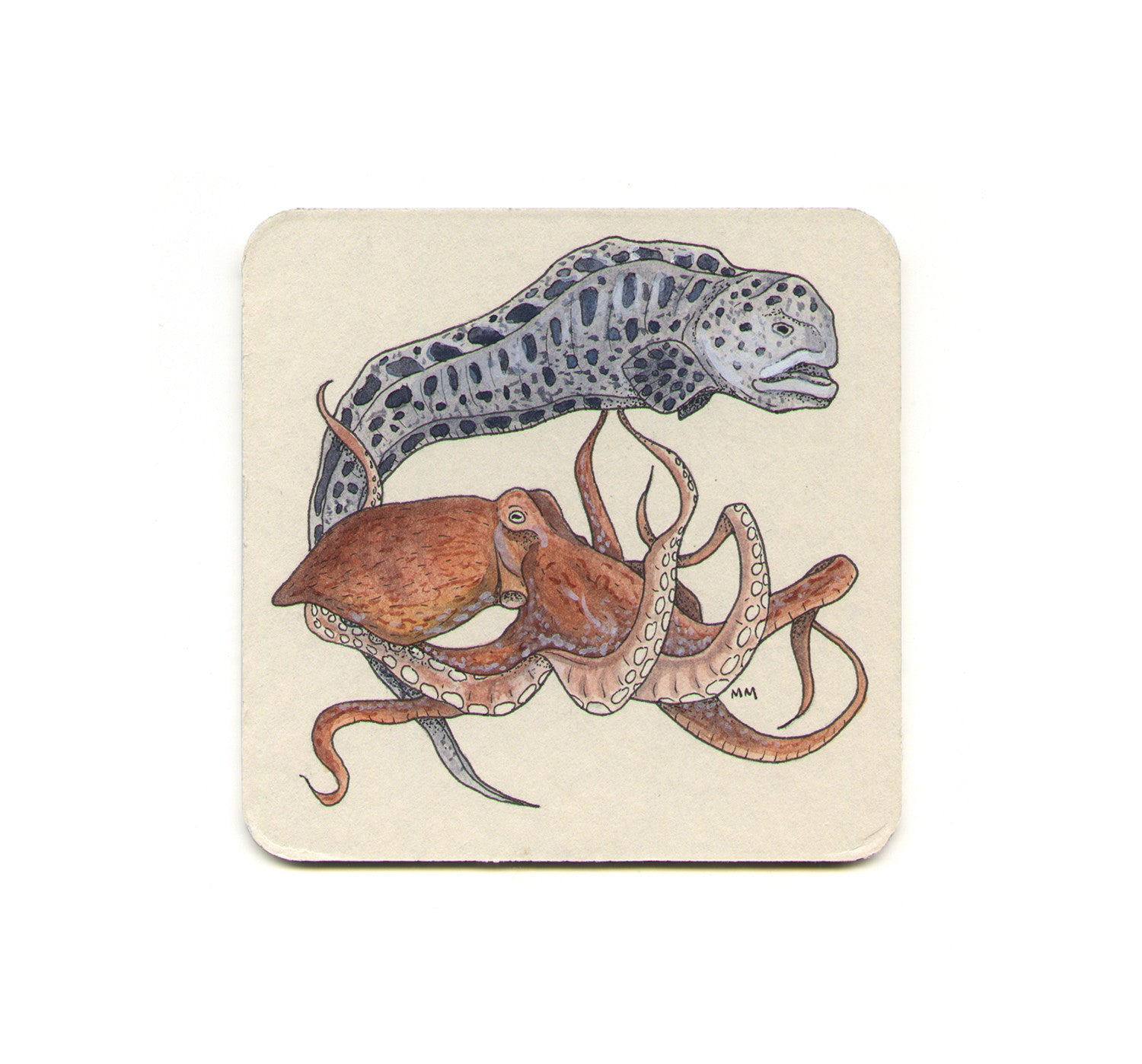 Wolf Eel & Giant Pacific Octopus Coaster