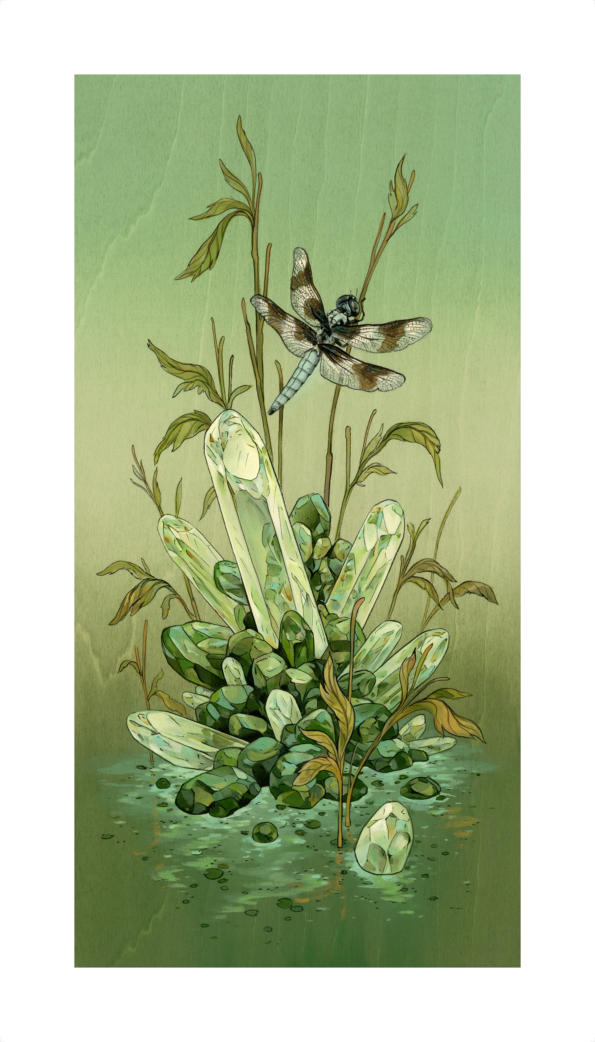 Nicole Gustafsson - Eight-Spotted Skimmer (hand-embellished) Print