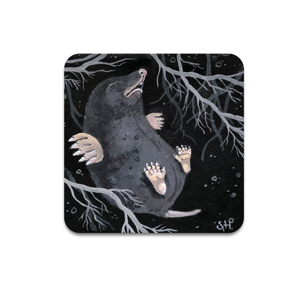 Shawn Hebrank - Roots Coaster