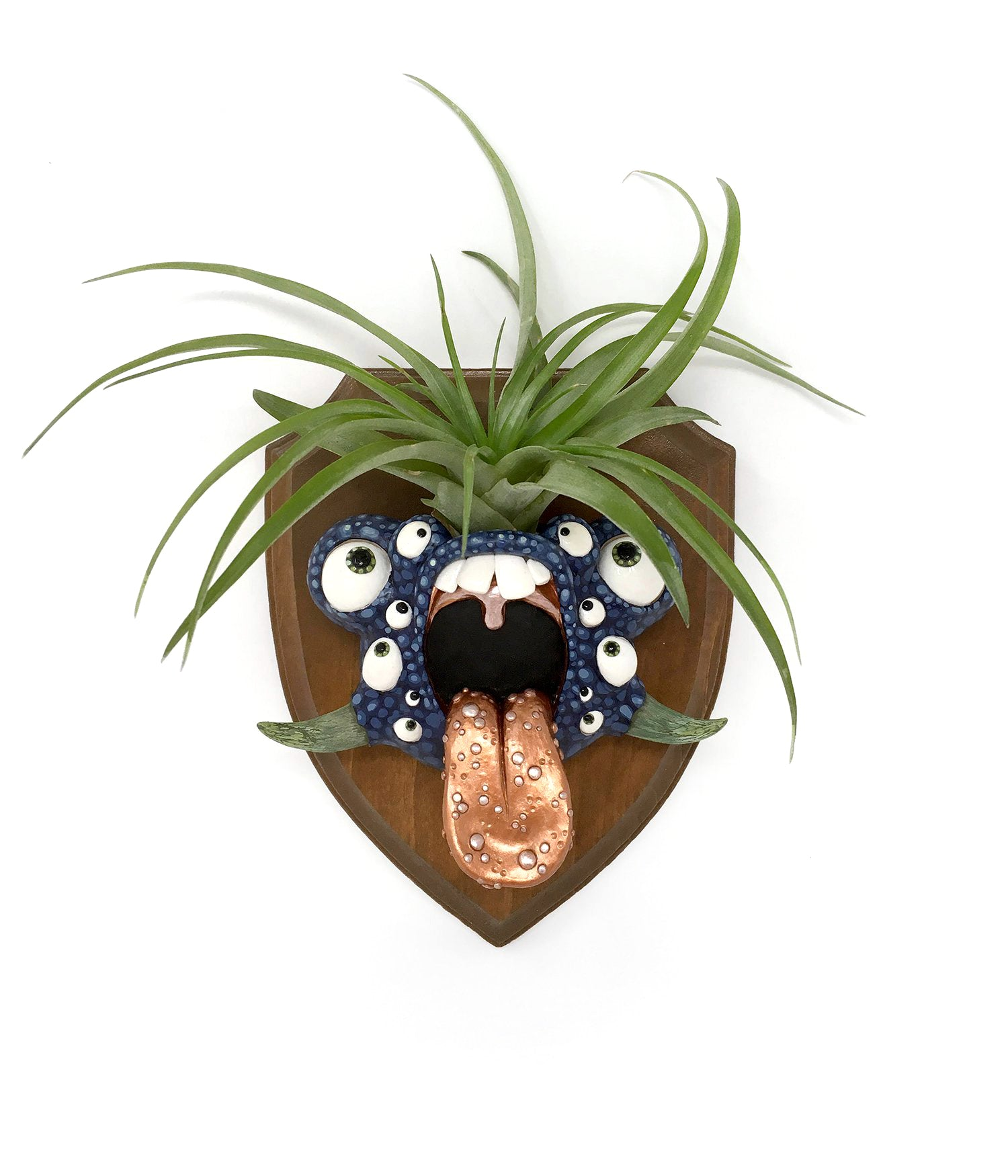 Brooke Duckart - Little beast with air plant hair