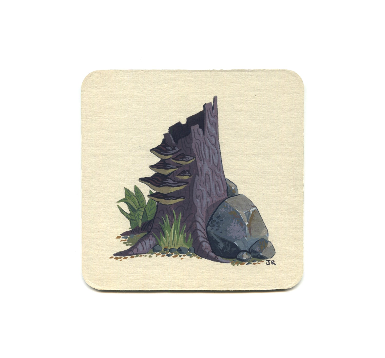 S1 Jesse Riggle - Mushrooms 1 Coaster