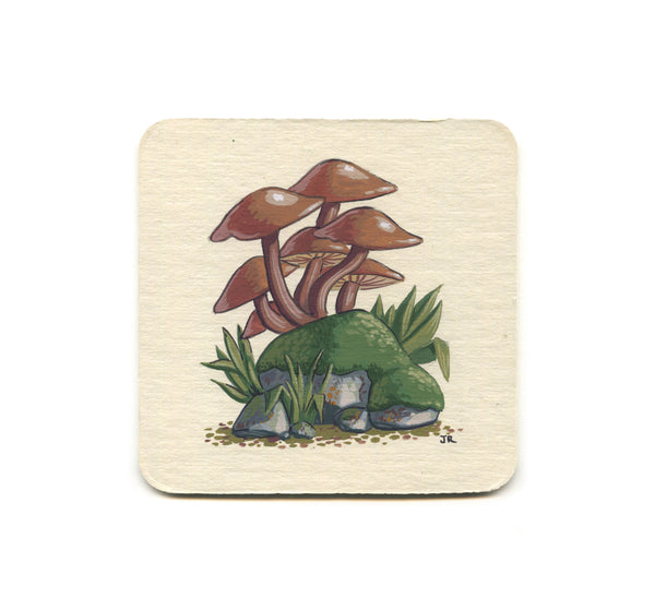 S1 Jesse Riggle - Mushrooms 2 Coaster