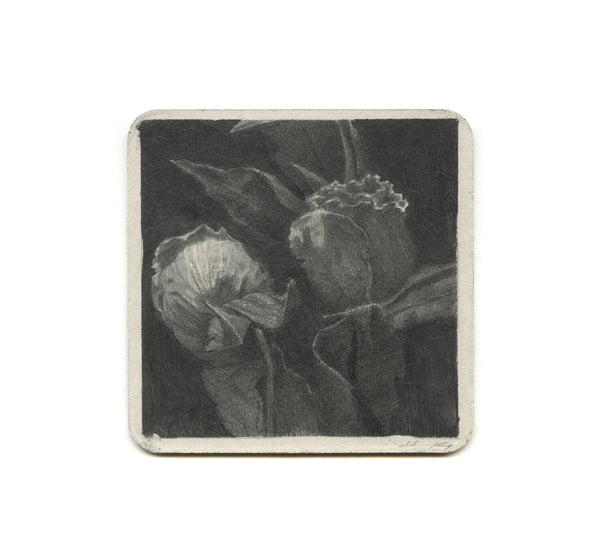 S1 Zach Oldenkamp - Flowers For Jeremy Coaster