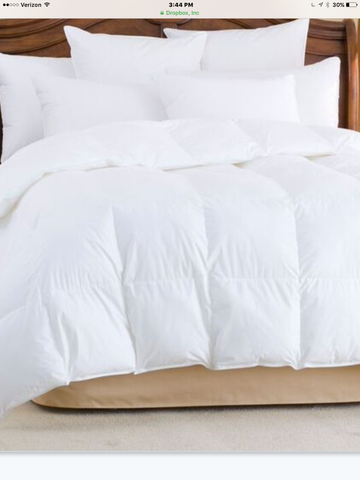 HIMALAYA - WHITE GOOSE DOWN PILLOW (700+ Polish White Goose Down)