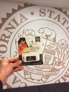 California State Capitol Visit Breastfeeding Rights and Paid Family Leave For All