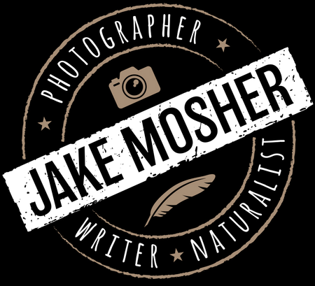 Jake Mosher Photography