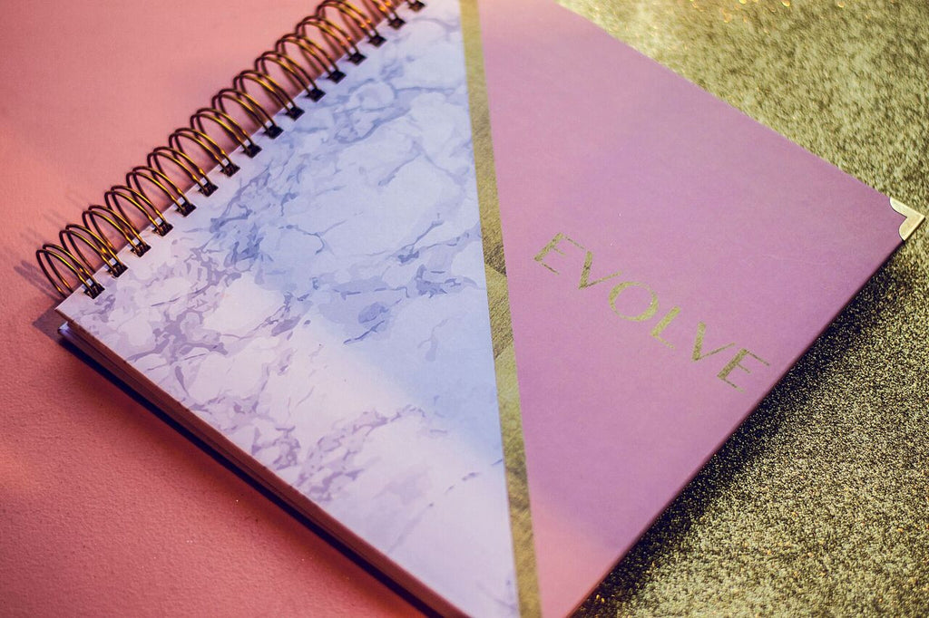 2017 Purpose Planner ( NOW SHIPPING )