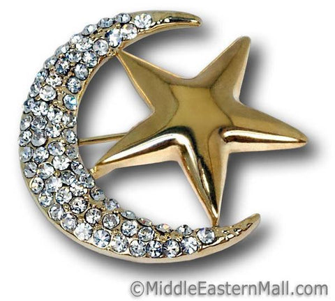 Moon & Star Brooch