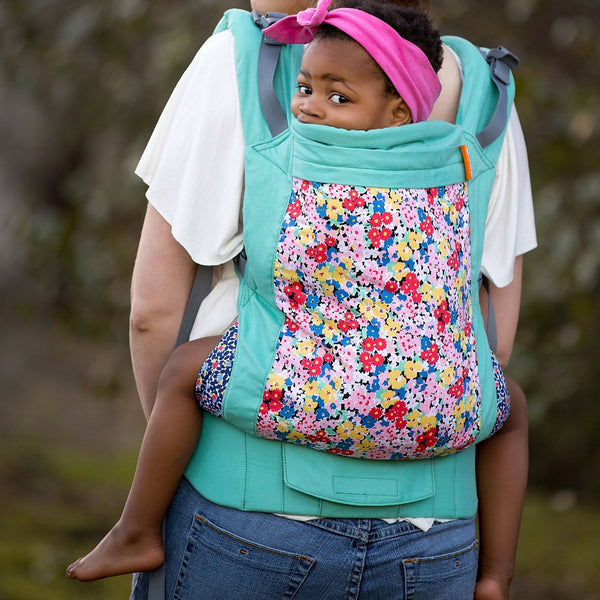 Why in the world would I want a Toddler Carrier?