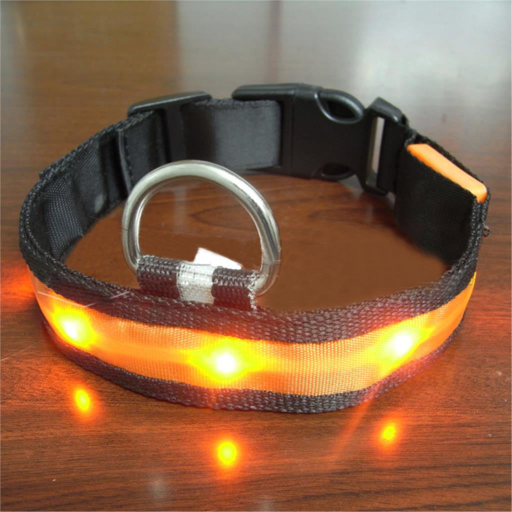Dog Collar LED