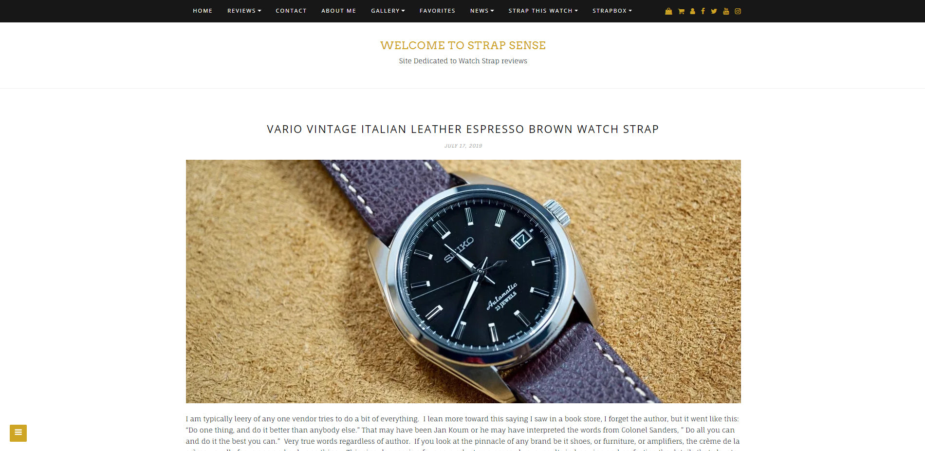 vario leather strap review