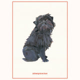 Dog Postcards - sample postcard
