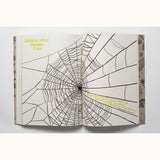 Hello Nature - Draw , Colour, Make and Grow, cobweb page