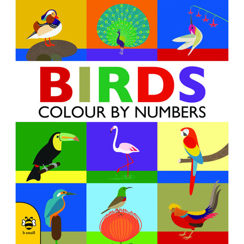 Birds - Colour By Numbers