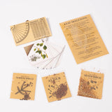 about trees nature kit, contents