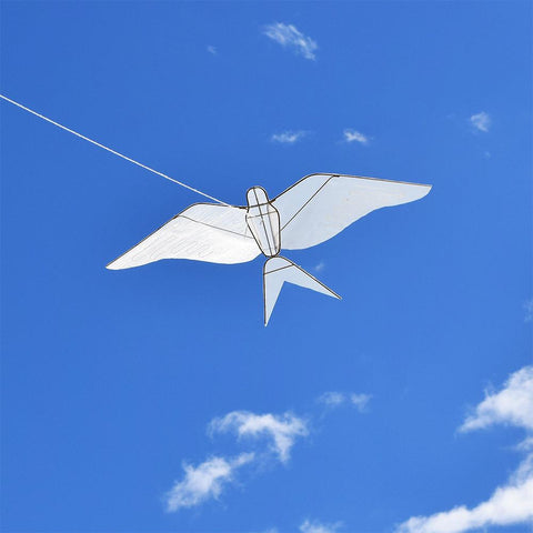 swallow kite flying in sky