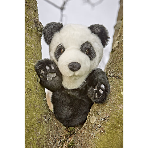 Panda Glove Puppet in tree