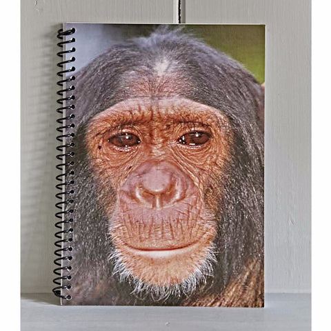 Chimp note book