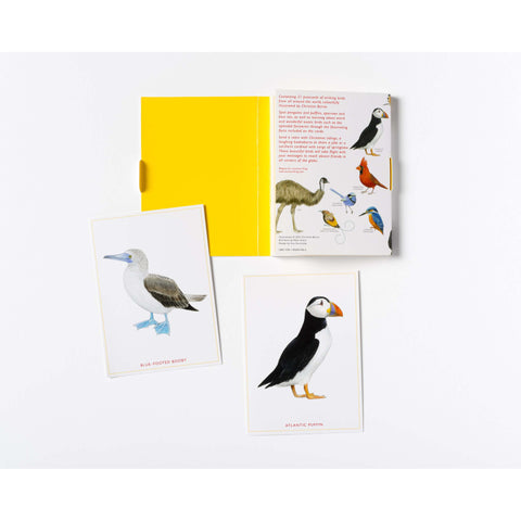 Bird Postcards contents
