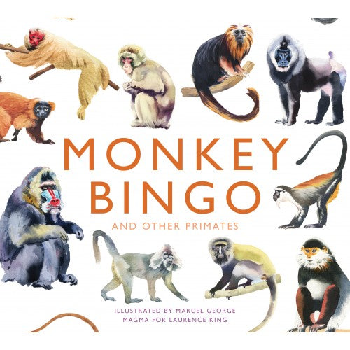 monkey bingo front of box