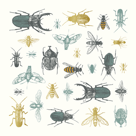 Insect Greeting Card - Eden Project