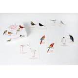Box and sample cards, Match A Pair of birds