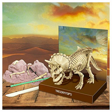 Triceratops Skeleton Excavation Kit, plaster, tools and skeleton displayed