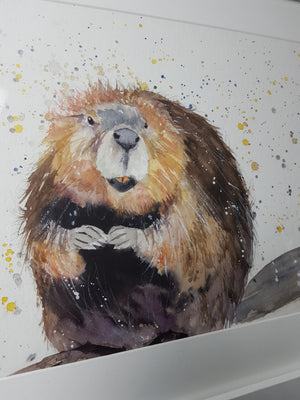 "Original Beaver Watercolour - 'Humphrey' 16.5"" x 12"" #3006 - SkinnyDaz Art, Design & Illustration"