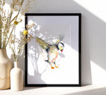 Puffin - A4/A3 Art Print - SkinnyDaz Art, Design & Illustration