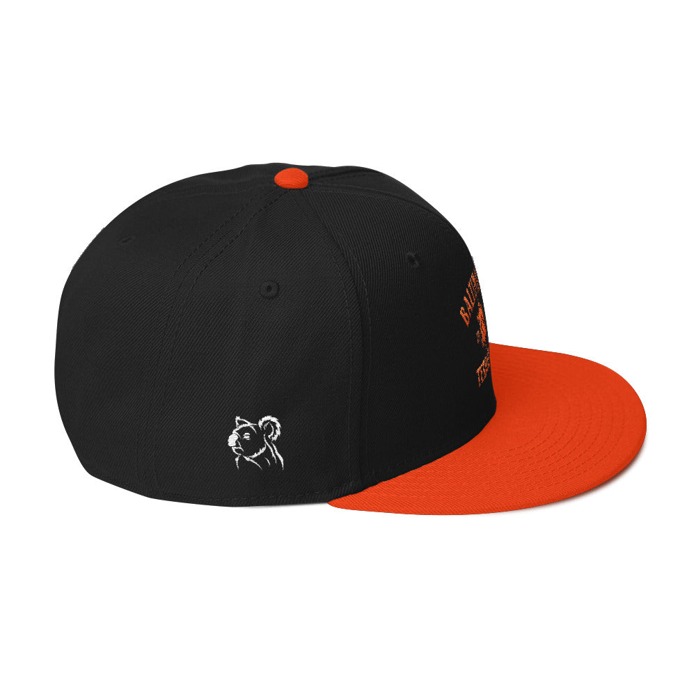 Vintage Baltimore Terrapin Snapback Hat right black and orange