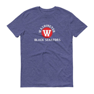 Washington Black Senators t-shirt heather blue