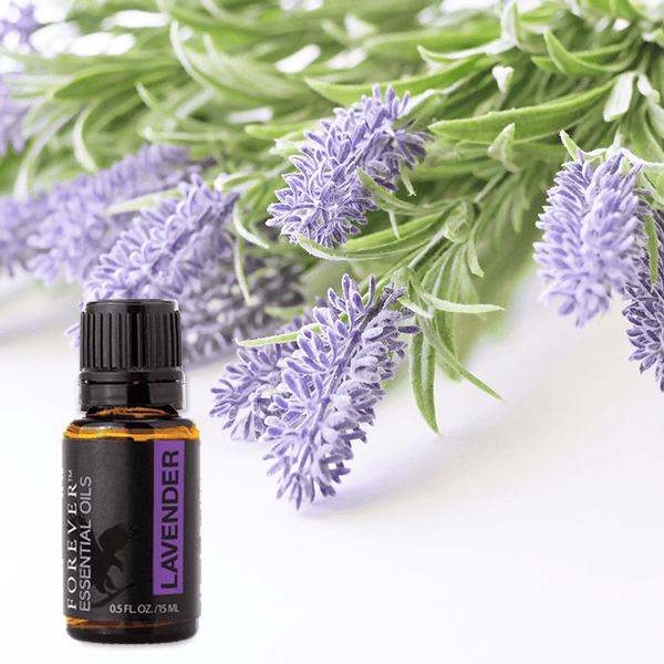 FOREVER ESSENTIAL OILS LAVENDER  (Art.506)