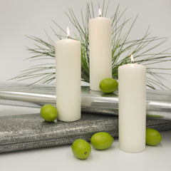 3x9 Unscented White Pillar Candle Candles Candlemart.com $ 4.49