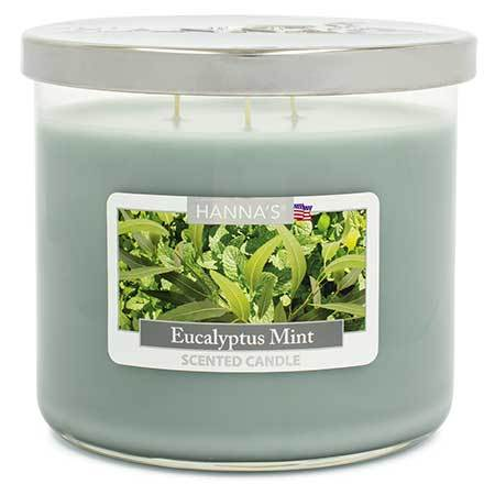 Eucalyptus Mint Scented Large 3 wick Candle - Candlemart.com