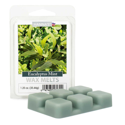 Eucalyptus Mint Scented 1.25oz Wax Melts 12 pack