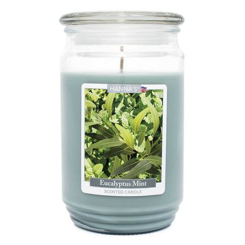 Eucalyptus Mint Scented Large Candle - Candlemart.com