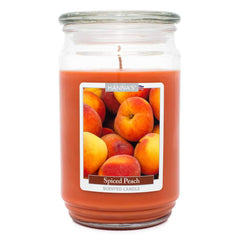 Spiced Peach Scented Large Candle