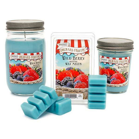 Wild Berry Scented Small Jar Candle Candles Candlemart.com $ 5.49