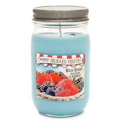 Wild Berry Scented Large Jar Candle - Candlemart.com
