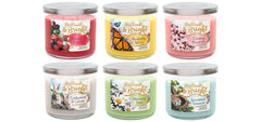 Speckled Treasure Scented Large 3 wick Candle Candles Candlemart.com $ 11.99