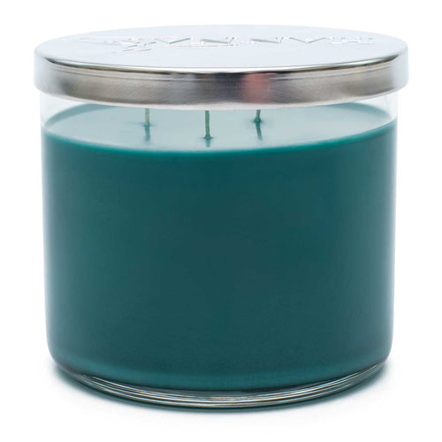 Dusted Pine Scented 3 Wick Candle