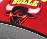 "CHICAGO BULLS ""EASTERN CONFERENCE"" NEW ERA 59FIFTY FITTED (AIR JORDAN 5 RETRO WHAT THE)"