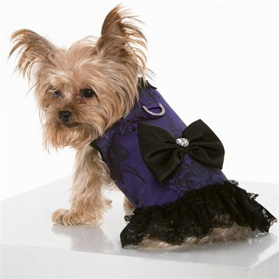 Some like it Haute - Corset Harness - ZoeDoggy of Beverly Hills